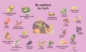 voankazo1