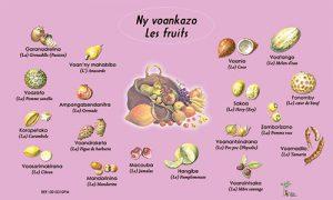 voankazo2
